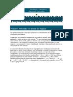 Funções Vetoriais e Curvas No Espaço Parametrização