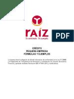 Pequeña Empresa - Raiz.pdf