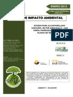 Eia Andahualo Junio 2013-1