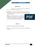 LOS-MINERALES.docx