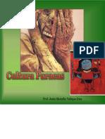 culturaparacasmedali-120924005908-phpapp01