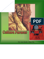 culturaparacasmedali-120924005908-phpapp01.pptx