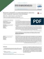 Mecanismos Patogénicos en La Enfermedad Pulmonar Obstructiva Crónica Causada Por Exposición a Humo de Biomasa
