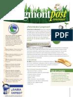 Longmont Post Consumer Guía de Reciclaje 2010