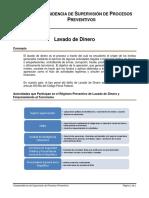 VSPP_Lavado de Dinero.pdf