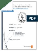 RevistasUniversitariasPeruanas.docx