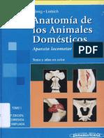 313510545 Anatomia de Los Animales Domesticos Tomo 1 Konig PDF