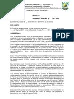 ORDENANZA MUNICIPAL NS..docx