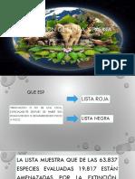 EXTINCION-DE-FLORA-Y-FAUNA-gestion (1).pptx