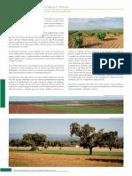 Paisaje_Campiñas_Guadiana.pdf