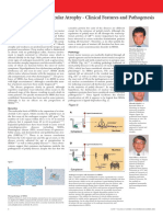 clinicalfeatures sbma