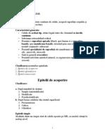 Lp1-Epitelial de Acoperire