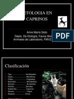 Etologia en Caprinos2008