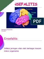 Dr Bambang Ensefalitis