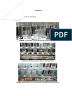 lampiran gambar asam amino.docx