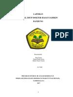 LAPORAN PRAPKL KELOMPOK 10.docx