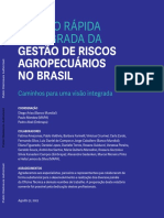 Revisao Rapida e Integrada Da Gestao de Riscos Agropecuarios Br