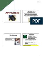 ENFERMEDADES VIRALES Caninos y Felinos 2010 [Modo de ad