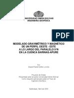 Dayed Nunez.pdf