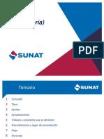 MANEJO PDT (teoría).pdf