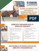 13-3-17 CAP ACS Sistema de Proteccion Nacional e Internacional