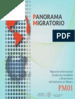 Panorama Migratorio