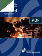 MANUAL_INDUSTRIAL Gas Natural.pdf