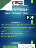 Método de inclusión Parafina