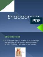 endodoncia-101231105241-phpapp02.pptx