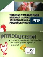 Guia Para Cria de Aves Criollas