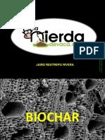 Bio Char