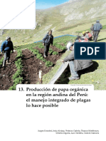 Producción de papa orgánica en la región andina del Perú