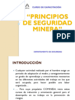 Principios de Seguridad Minera