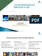 EFICIENCIA_PROC_COMBUSTAO_GAS_WAGNER_BRANCO.pdf