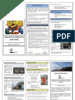 SSYMA-P03.03-F07 Guía de Inducción de Visitas - Salaverry V3