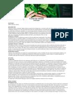 cordyceps_sinensis_160904.pdf