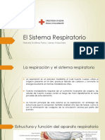 El Sistema Respiratorio.pptx
