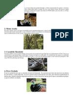 animales y areas protegidas.docx