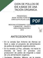 PRODUCCION DE POLLOS DE ENGORDE A BASE DE.pptx