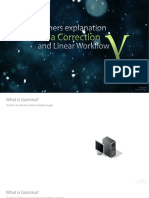 The_Beginners_Explanation_of_Gamma_Correction_and_Linear_Workflow.pdf