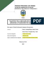 Informe Final Efqm 29 Junio Rev Turnitin