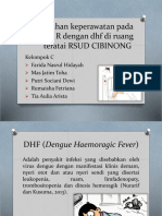 ppt anak dhf