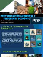 contaminación ambiental y problemas economicos