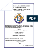 TESIS MAESTRIA SEGUNDO JOSE ZAMORA HUAMÁN.pdf