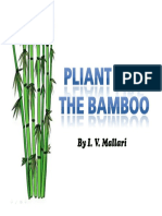 Pliant Like the Bamboo - IMs