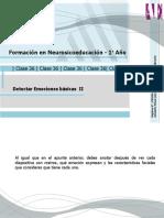 Apunte C Detectar Emociones Básicas II.01