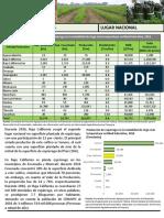 Caracterización e Identificación de Las Demandas Tecnológicas Del Sistema Producto Esparrago 2003