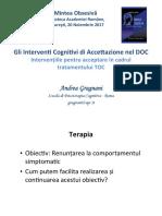 Interventiile_pentru_acceptare.pdf