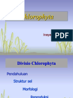 Kuliah_III_Chlorophyta-2018.pdf
