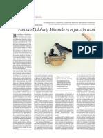 Pascual Calabuig Miranda vs el pinzón azul de Gran Canaria